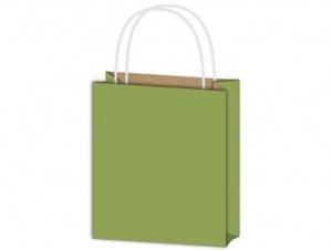 Dísztasak papír zöld 260x320x100