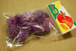 Tüskés termés lila 10-12db/csom
