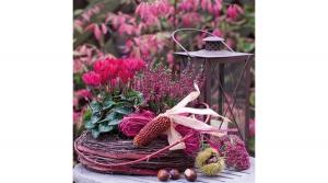 szalvéta 33x33 cm, 3 rétegű, 20 lapos, Red Autumn